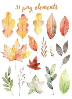 Watercolor Leaves, Watercolor Cards, Watercolor Background, Floral Watercolor, Watercolor Paintings, Watercolors, Autumn Painting, Autumn Art, Autumn Trees