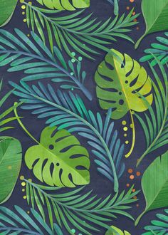 ideas for palm tree background pattern leaves Tropical Colors, Tropical Art, Tropical Pattern, Tropical Leaves, Tropical Rain Forest, Forest Rain, Tropical Prints, Forest Illustration, Plant Illustration