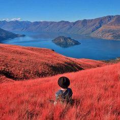 Lake Wanaka, Minaret Bay, Neuseeland - von Wings of a Feather - Honeymoon Hochzeitsreise Flittern Visit New Zealand, New Zealand Travel, Beautiful World, Beautiful Places, Papua Nova Guiné, Places To Travel, Places To Go, New Zealand Adventure, Lake Wanaka