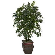 Mini Bamboo Palm w-Decorative Vase