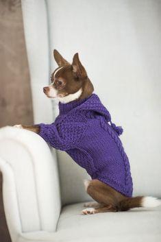свитерок для собачки с капюшоном