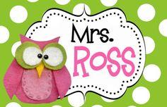 PREPPY OWL TEACHER DOOR SIGN-preppy owl, pink and green