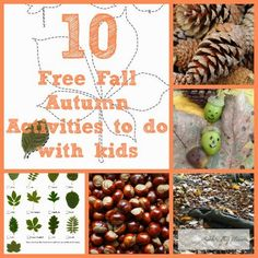 A Thrifty Mum: 10 Free things to do in Autumn or Fall with your children