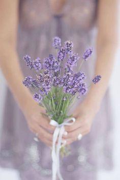 Lavanda #LavenderFields