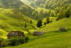 Carpathian Mountains, What A Wonderful World, Future Travel, Romania, Wonders Of The World, Cool Pictures, Travel Destinations, Golf Courses, Places To Go