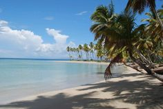 Palms trees, sunshine, sand and beautiful water. The four key things to paradise :)