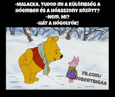 Winnie The Pooh, Funny Jokes, Haha, Funny Stuff, Disney Characters, Fictional Characters, Funny Pictures, Comics, Memes