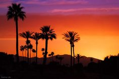 Sunset in Maricopa, Arizona
