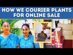 How to COURIER live PLANTS for online SALE how to pack plants for courier LIVE PLANTS PACKING IDEA - YouTube Garden Online, Types Of Plants, Online Sales, Modern Kitchen Design, Live Plants, Packing, Youtube, Bag Packaging, Youtubers