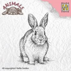 Tampon Dessin animaux lapin
