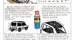 WD-40 can be effective at removing the most difficult stuff from both your car exterior and interior. Removing bugs, grime, old bumper stickers, tree sap, and bird droppings on the outside, and crayon, grease, and gum on the upholstery or carpet. WD-40 won't get out every stain or fix every problem, but it sure can come in handy. X