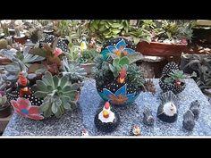 Presentinhos que ganhei para jardim, replante do cactos rabo de macaco, respondendo preguntas..... - YouTube