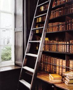 I will have a rolling ladder in my library, and I will pretend to be Belle from Beauty and the Beast. End of story.