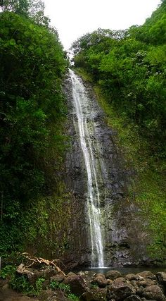 manoa falls (honolulu, oahu) ...hiking trail. this waterfall and natural pool is at the top of the hike.