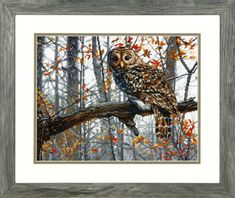 Love this Wise Owl Cross-Stitch Kit by Dimensions Needlecrafts on Cross Stitch Owl, Counted Cross Stitch Kits, Cross Stitch Patterns, Cross Stitches, Dimensions Cross Stitch, Bird Crafts, Wise Owl, Needlepoint, Animals