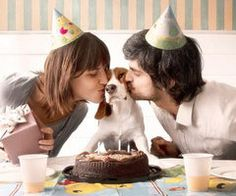Cutest dog birthday picture. I want one just like this. If you love dogs, please visit whatcanwe.org.