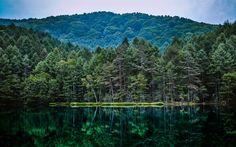 Lataa kuva metsä, lake, pohdintaa, vuoret