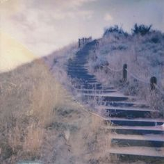 Hiking last summer with @timmmymartin & @oliviahillo 🌞  @impossible_hq #impossibleproject #expiredfilm