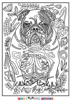 Free printable Australian Cattle Dog coloring page Lily