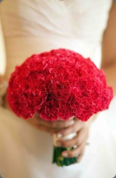 Ramo de novia de claveles :: Carnations wedding bouquet by Last Petal