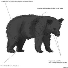How to draw a bear step 2: create a layer underneath the sketch. Fill it with a solid outline of the gesture sketch and then merge the layers together. This process will create a solid object in one layer for you to add details to.