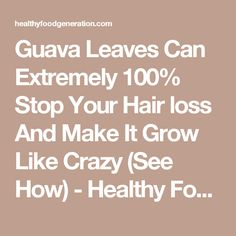 Guava Leaves Can Extremely 100% Stop Your Hair loss And Make It Grow Like Crazy (See How) - Healthy Food Generation