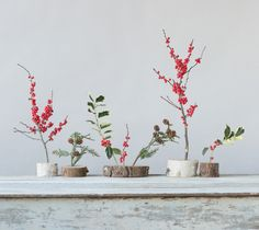 Ilex Centerpiece  Mix winter sprigs and log slices for an easy-to-assemble and festive centerpiece that can be adapted to any dining table.  Ingredients: 2 holly sprigs 2 redwood sprigs 2 ilex branches  Materials: 5 log slices  by Artisan Books