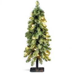 National Tree Company 2 ft. Downswept Artificial Christmas Forestree with Clear Lights-FTD1-24ALO-1 - The Home Depot