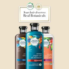 Our real botanicals are endorsed by Royal Botanic Gardens, Kew - a world-leading authority on plant science. Explore the entire collection today. Natural Hair Care, Natural Hair Styles, Thin Hair Haircuts, Herbal Essences, Plant Science, Creative Advertising, Formal Hairstyles, Your Hair, Herbalism