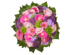 france Flowers - Splendid Surprise