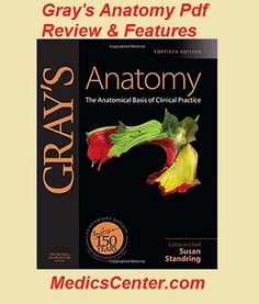 Gray's Anatomy pdf Review And Features