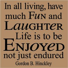 T73- In all living, have much fun and laughter Life is to be enjoyed not just endured Hinckley  12x12 vinyl wall decals lettering words. $7.99, via Etsy.