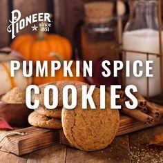 Pumpkin Cookie Recipe, Pumpkin Spice Cookies, Pumpkin Dessert, Pumpkin Recipes, Cookie Recipes, Snack Recipes, Dessert Recipes, Snacks, Fun Easy Recipes