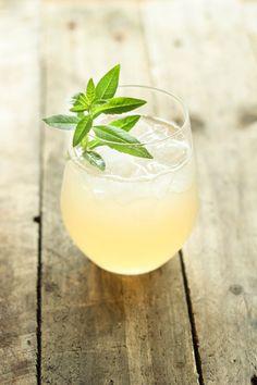 Gooseberry Cordial Recipe