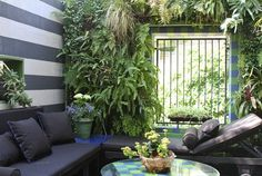 Raimud's Designer Home and Lush Garden in the Hollywood Hills