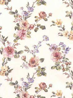 Ilustraciones de flores.
