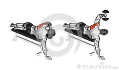 Lead hand with a dumbbell rear deltoid Exercising. Lead hand with a dumbbell rear deltoid Muscle Fitness, Mens Fitness, Fitness Tips, Gain Muscle, Muscle Mass, Fit Board Workouts, Gym Workouts, At Home Workouts, Back Exercises