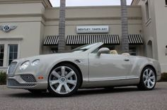 2016 Bentley Continental GT  at Dimmitt Automotive Group in Tampa, FL