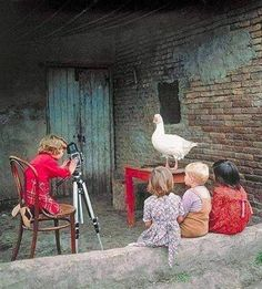 photography lesson ...