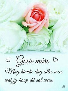 Good Morning World, Good Morning Good Night, Good Morning Wishes, Morning Greetings Quotes, Morning Quotes, Lekker Dag, Evening Greetings, Afrikaanse Quotes, Goeie More