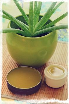 5 Natural Kitchen Healers You Can't Live Without! Home Health Remedies, Home Remedies For Acne, Natural Cures, Natural Healing, Aloe Vera Skin Care, Natural Kitchen, Homemade Beauty, Health Fitness, Herbs