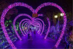 Wedding decorations christmas lights 41 Ideas for 2019 Wedding Entrance, Wedding Mandap, Entrance Decor, Wedding Receptions, Wedding Dresses, Wedding Set Up, Wedding Ideas, Trendy Wedding, Wedding Planning