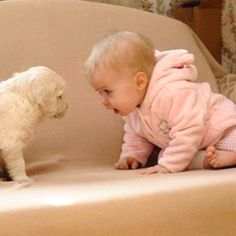 Babies and animals. Adorbs