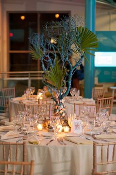 Under The Sea Wedding Theme Decorations | enright photography is the preferred photographer for the aquarium and ...
