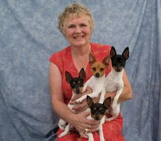 Foxhill Toy Fox Terriers - To Have & To Hold - Love for a Lifetime Toy Fox Terrier Puppies, Rat Terriers, Cute Puppy Pictures, Dog Pictures, Cute Puppies, Dogs And Puppies, Puppy Litter, Smooth Fox Terriers, The Fox And The Hound