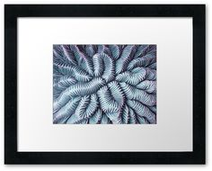 Pic Your Brain Coral (Charged) by Nikki Smith