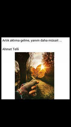 Artık aklıma gelme, yanım daha müsait Ahmet Telli