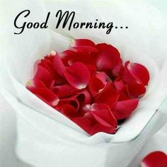 Good morning my beautiful angel 😙 I love you so much sweetheart 😙 Good Morning Msg, Good Morning Wednesday, Good Morning Love Messages, Morning Thoughts, Good Morning Texts, Good Morning Coffee, Good Morning Picture, Good Morning Quotes, Very Good Morning Images