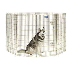 MidWest Foldable Metal Exercise Pen / Pet Playpen >>> Click on the image for additional details.