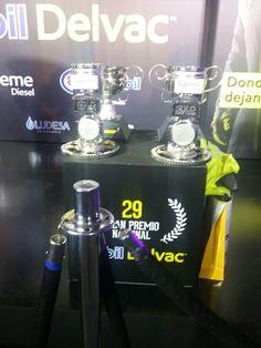 Trofeos de loas ganadores, 29 Gran Premio Nacional Mobil Delvac.